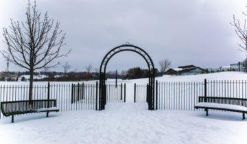 Wintery Bradford